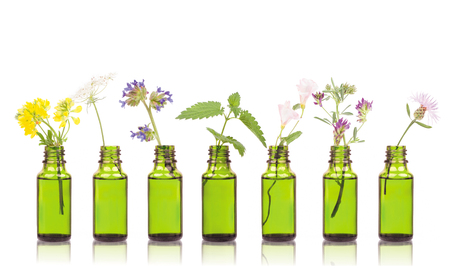 Natural remedies, aromatherapy - bottle. Bottles of essential oil with herbs holy flower. Stock Photo