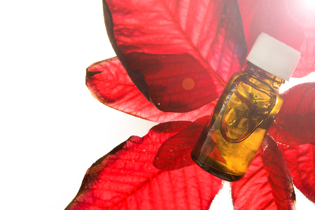 Floriterapia Bacha - natural medicine. Essential oil with flowers on white.
