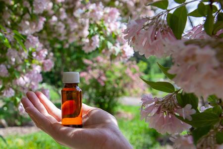Ätherische Kräuter, Öl und Kamillenblüten. Kamille - natürliches Heilöl.