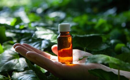 Bottles with organic essential aroma oils. Alternative medicine - natural floral extracts and oils.