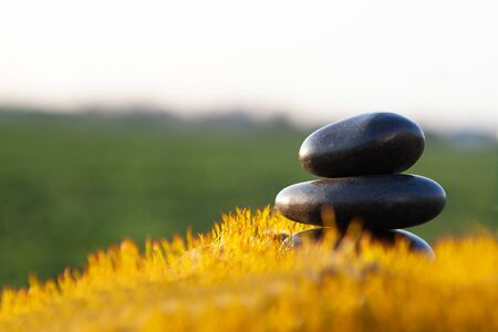 Stone of balance - spece for tex. Stack of zen stones on nature background. Standard-Bild