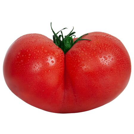 Original butt-shaped tomato - on a white background. 