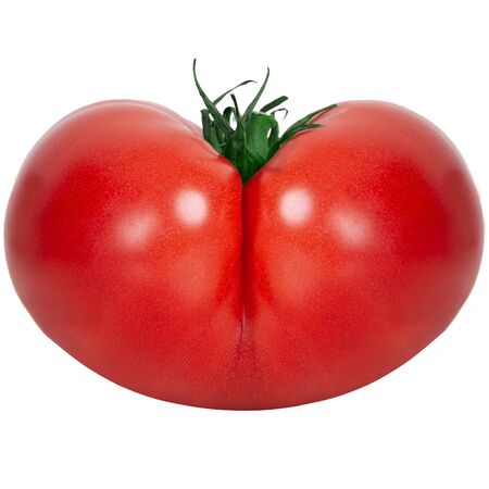 Fresh tomato isolated - vegetable and woman shape, ass. Original butt-shaped tomato - on a white background. Standard-Bild