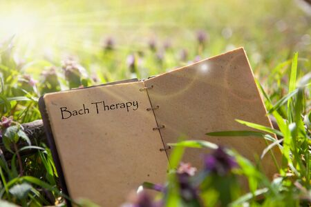 Bach flower remedies - old book, recipe. Traditional recipe book - natural remedies.