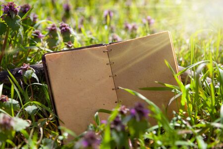 Herbs properties, vintage style. Old notebook in the grass.