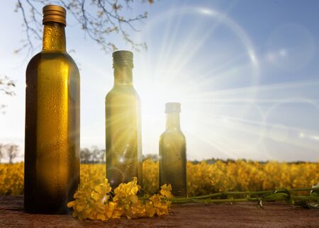 Oil bottle with rapeseed on the background of the field. Natural olive oil, organic farming - the sun