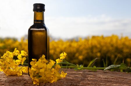 A bottle with fresh oil on the background of the field. Rapeseed oil - natural food.