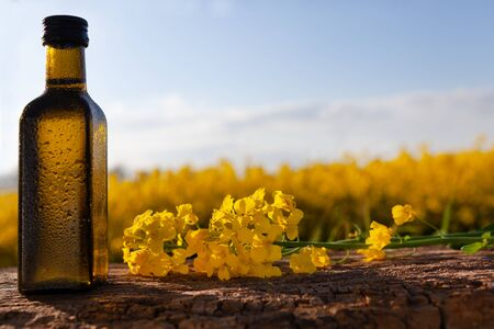 Organic rapeseed oil - space for text. Bottle with fresh oil on the background of the field.