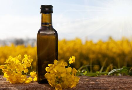 Rape oil and flower on wooden table with nature rape field background. Rapeseed oil on wooden table in field