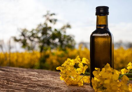 Bottle of rapeseed oil (canola) and rape flowers bunch on table. Rapeseed oil on wooden table in field