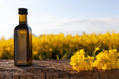Oil bottle on the background of oilseed rape. Olive on a wooden table - organic product. Standard-Bild