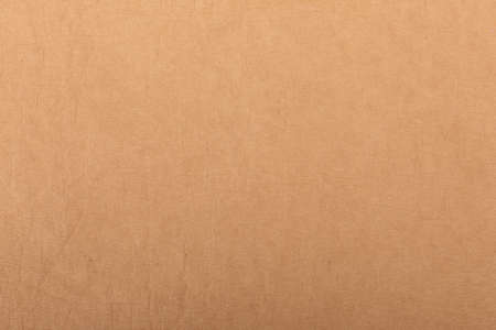 Texture of old organic light cream paper, background for design with copy space text