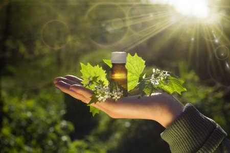 Fresh herbs - Natural remedies - Bach flower remedy.