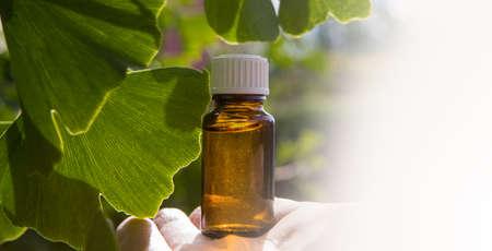 Ginkgo biloba essential oil - beauty treatment, speace for text Banque d'images