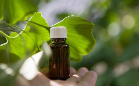 Ginkgo biloba leaves and medicine bottles - copy space. Banque d'images