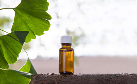 Fresh ginkgo leaves and brown medicine bottle. Place for your text. Banque d'images