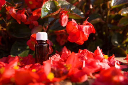 Concept - flower aromatherapy, BACH. A bottle with red flowers