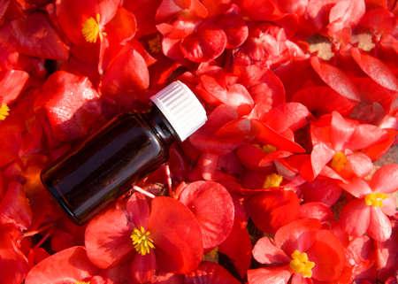 Red flower essential oil in a brown bottle. BACH therapy. Banque d'images