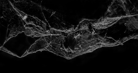Abstract Cobweb on black background