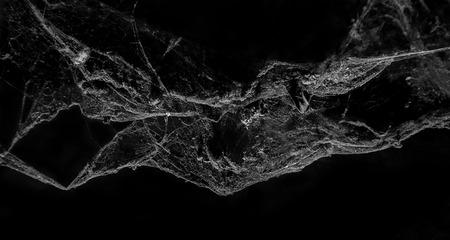 Abstract Spinneweb op zwarte achtergrond