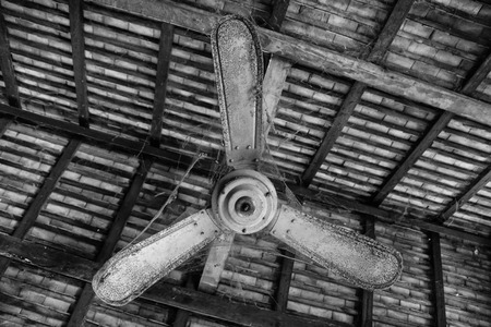 fan ceiling: old electric ceiling fan cobweb and dusty