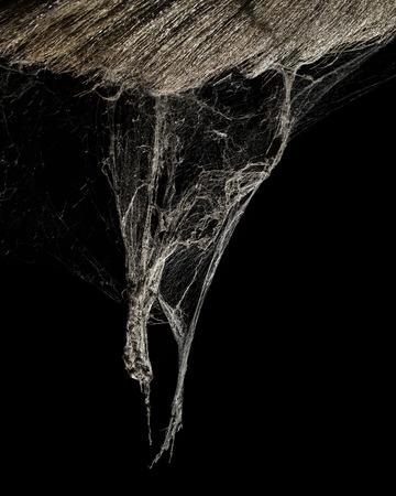driehoek horror spinneweb spinnenweb voor holloween achtergrond