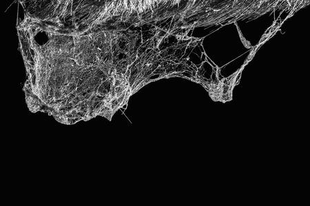 Horror spinneweb of spinnenweb geïsoleerd op een zwarte achtergrond in het oude Thai House