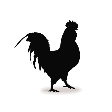 Form contour cock, chicken sign Vector