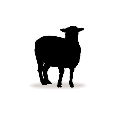 Form contour of sheep Vector