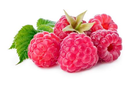 Freshly picked raspberries on white