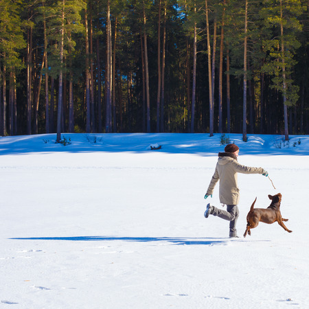 sharpei: Woman playing with her dog on a winter sunny day