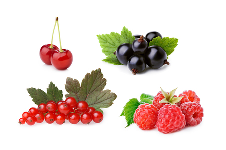 Set of isolated cultivated berries: blackcurrant, redcurrant, raspberry,sour cherry. Studio shot, infinite depth of field, retouched