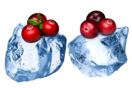 wildberry: Wild cranberries freezing on rough crushed ice. Clipping paths, large depth of field Stock Photo