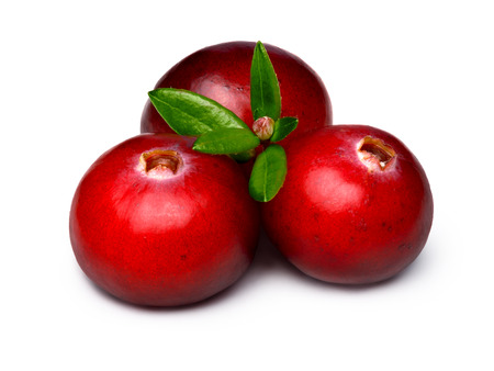 wildberry: Three wild cranberries with leaves. Clipping paths, infinite depth of field, retouched. Stock Photo