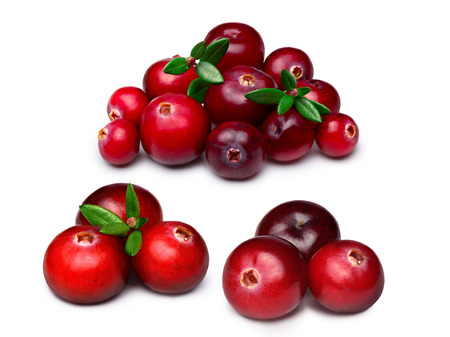 wildberry: Set of wild cranberries. Clipping paths, infinite depth of field, retouched.