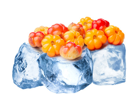 chicout�: Heap of wild cloudberries freezing on rough crushed ice. Clipping paths for cloudberry and for whole composite