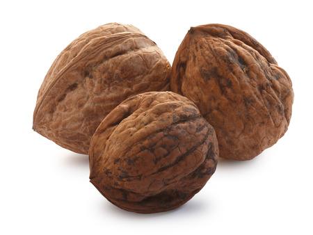 shelled: Three shelled whole walnuts (edible seed of tree of Juglans regia).