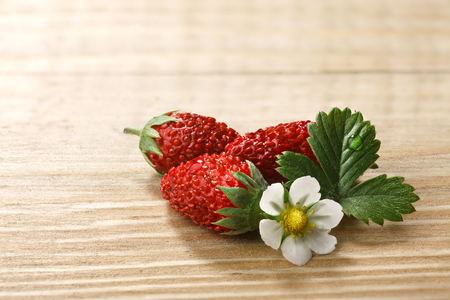 fragaria: Woodland strawberry (Fragaria vesca, fraise de bois) with flower and leaves on wooden table.