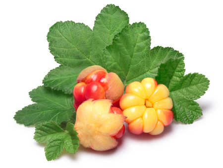 rubus: Three cloudberries (Rubus Chamaemorus) with leaves. Clipping paths, berries and shadow separated, infinite depth of field Stock Photo