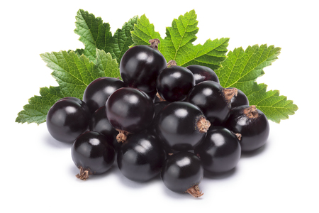 ribes: Blackcurrant pile (Ribes Nigrum) with leaves. Clipping paths, shadow separated, infinite depth of filed Stock Photo