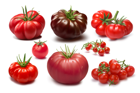 Collection of different tomato cultivars. Various shapes and colors. Heirloom tomatoes. shadows separated, infinite depth of field. Design elements Stock Photo