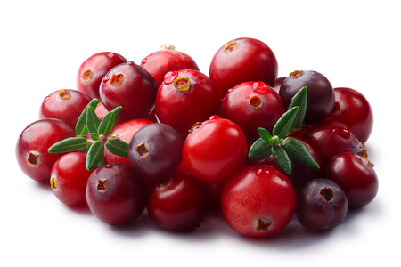 Pile of wild cranberries (Vaccinium oxycoccus) with leaves. Clipping paths, shadow separated Stock Photo