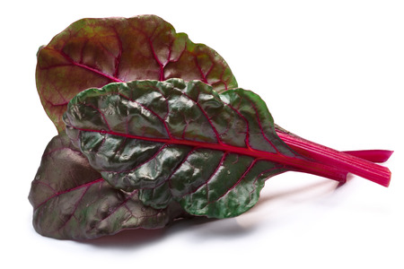 Leaves of Swiss chard or Mangold (Beta vulgaris subsp. Cicla-Group). Clipping paths, shadows separated
