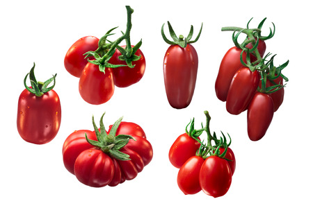Set of Italian tomatoes: Roma VF, San Marzano, Costoluto Fiorentino. Clipping path for each tomato, shadowless