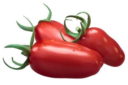 Fresh plum paste San Marzano tomatoes (Solanum lycopersicum), with sepals. Clipping path, shadowless