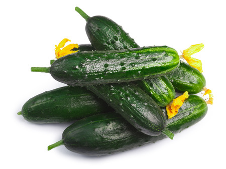cucumis sativus: Pile of fresh tiny cucumbers or gherkins (Cucumis sativus), top view. Clipping paths, shadow separated