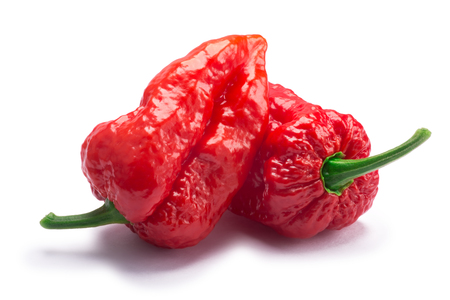 Bhut Jolokia ghost chili peppers (Capsicum frutescens x Capsicum chinense hybrid). Clipping paths, shadow separated Banco de Imagens - 75612898