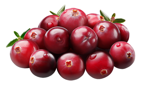 Pile of cranberries (fruit of Vaccinium oxycoccus), ripe, round, with leaves. Clipping path, shadowless Stok Fotoğraf