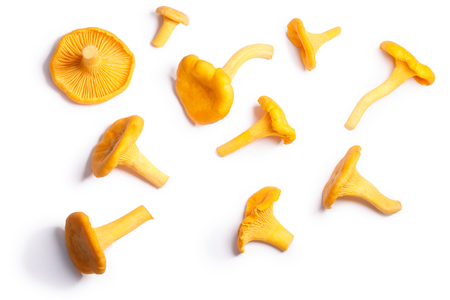 Chanterelles or girolles mushrooms (Cantharellus cibarius), top view. Clipping paths, shadow separated