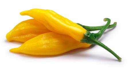 Aji Lemon Drop chile peppers (Capsicum baccatum).   shadow separated